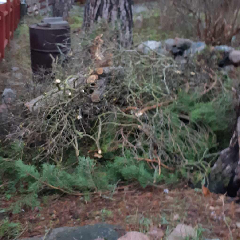 image of Grenar - Lidingö
