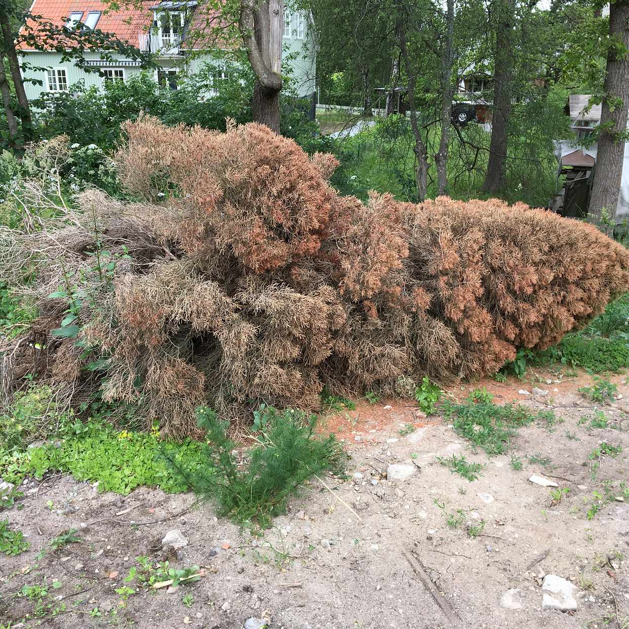 image of Blandat avfall - Stocksund