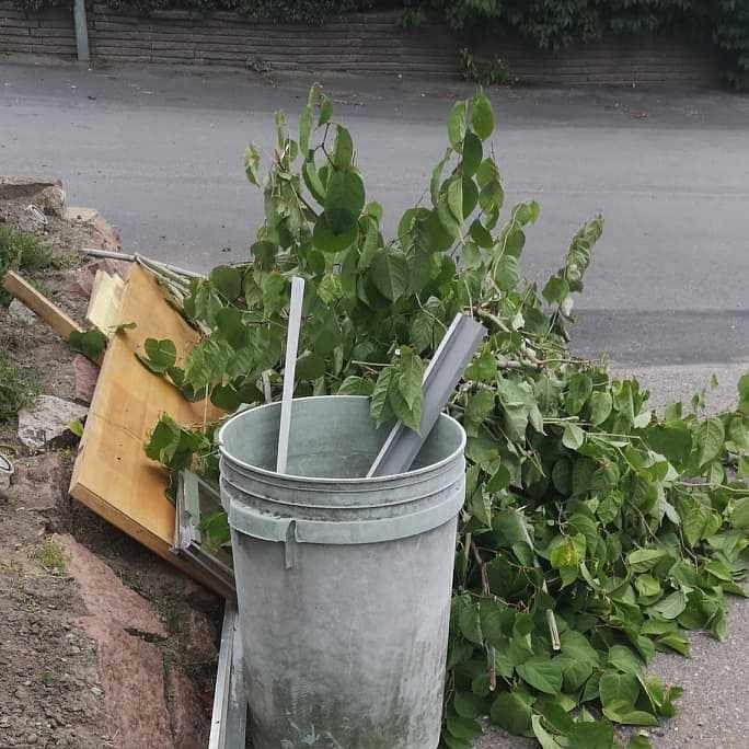 image of Tragardsrens + vindsrens - Åkersberga