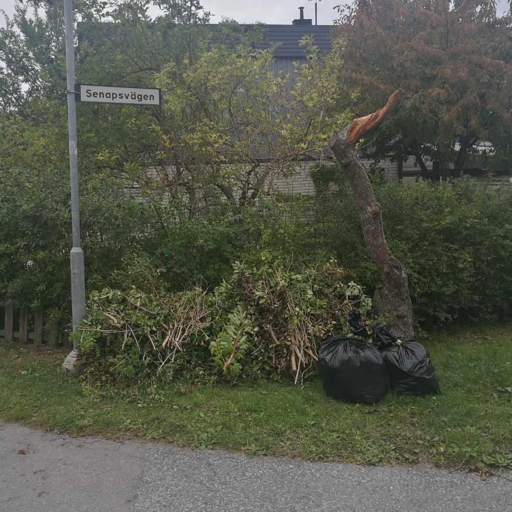 image of Trädgårdsrens - Ekerö
