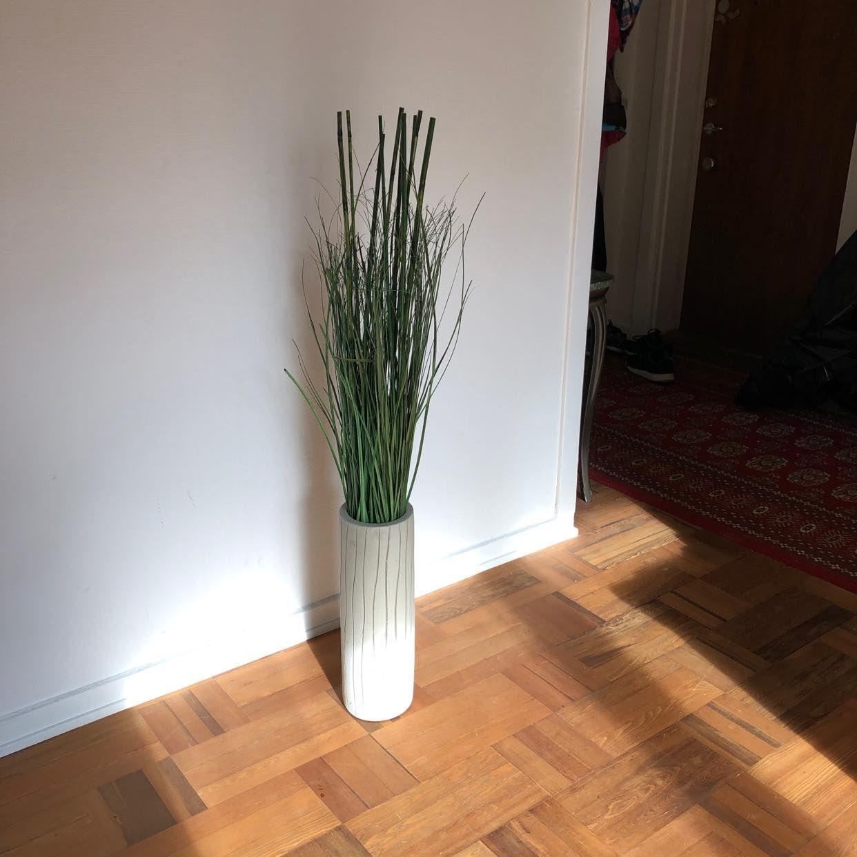 image of Vas/kruka med växt - Bromma