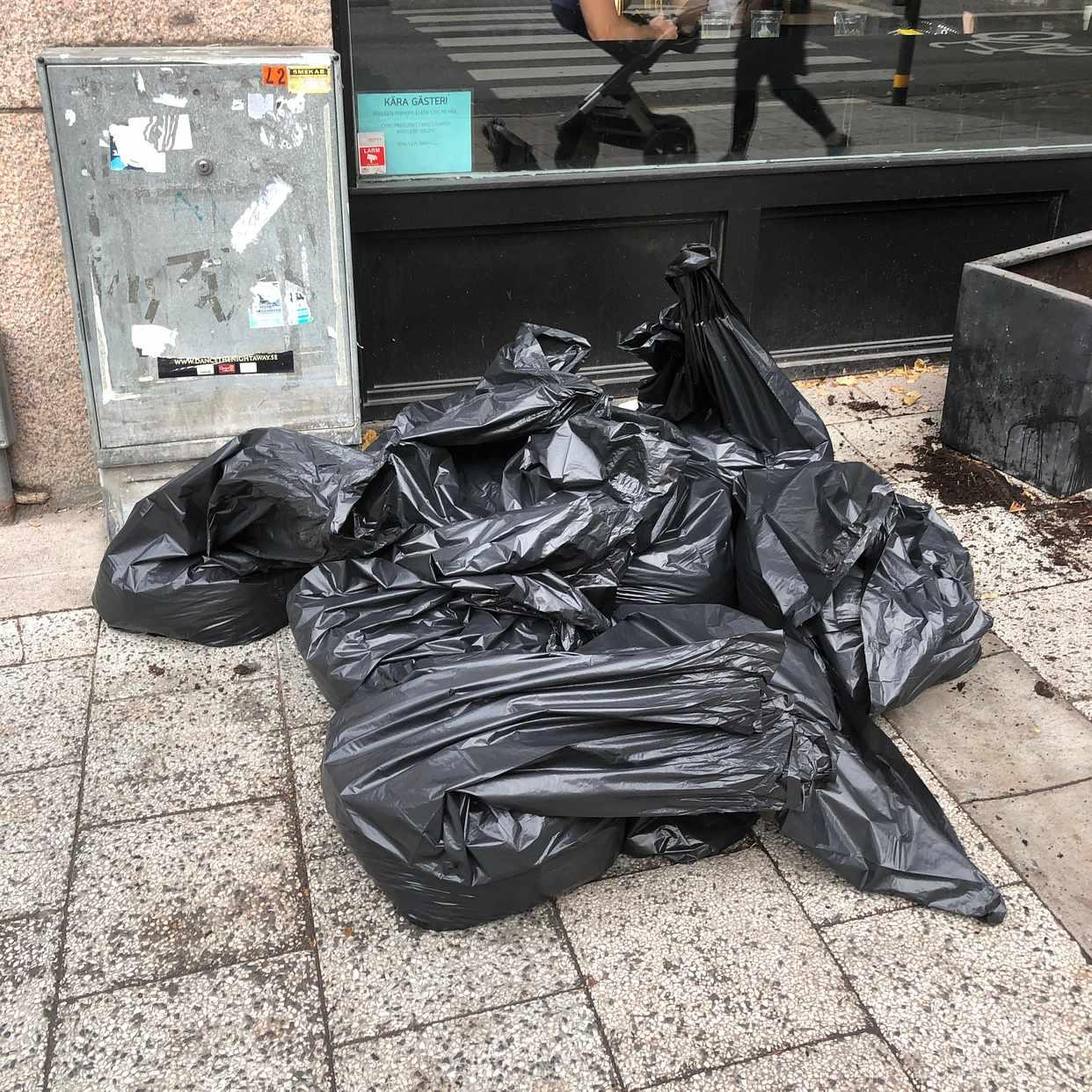 image of Gammal jord och växter - Stockholm