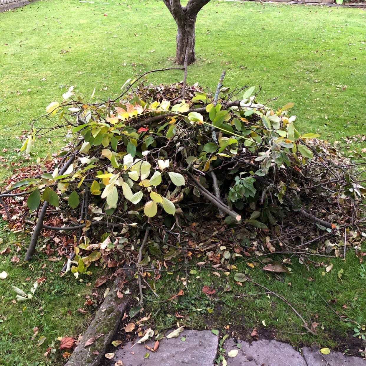 image of Garden waste - Västra Frölunda