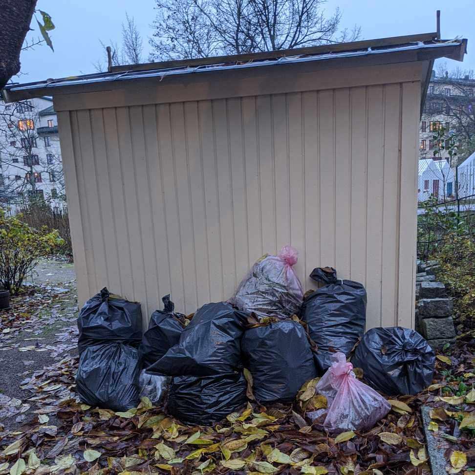 image of Trädgårdsrens - Stockholm