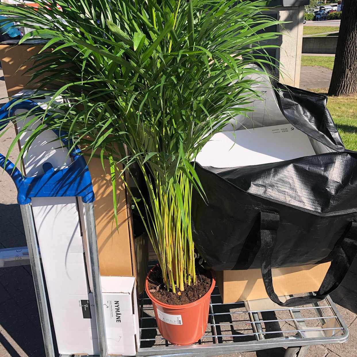 image of Ikea purchases -