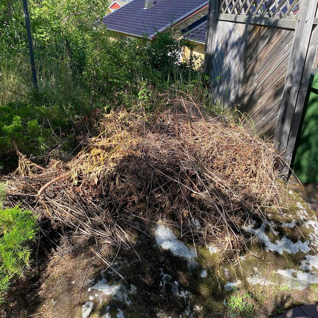 image of Ta bort rensade grenar - Lidingö