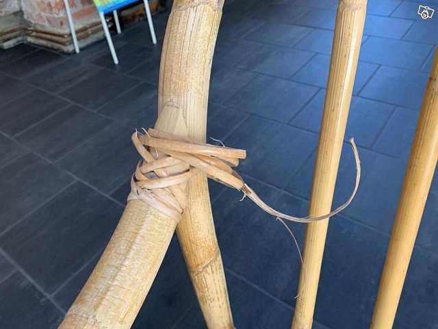 image of Bambusoffa -