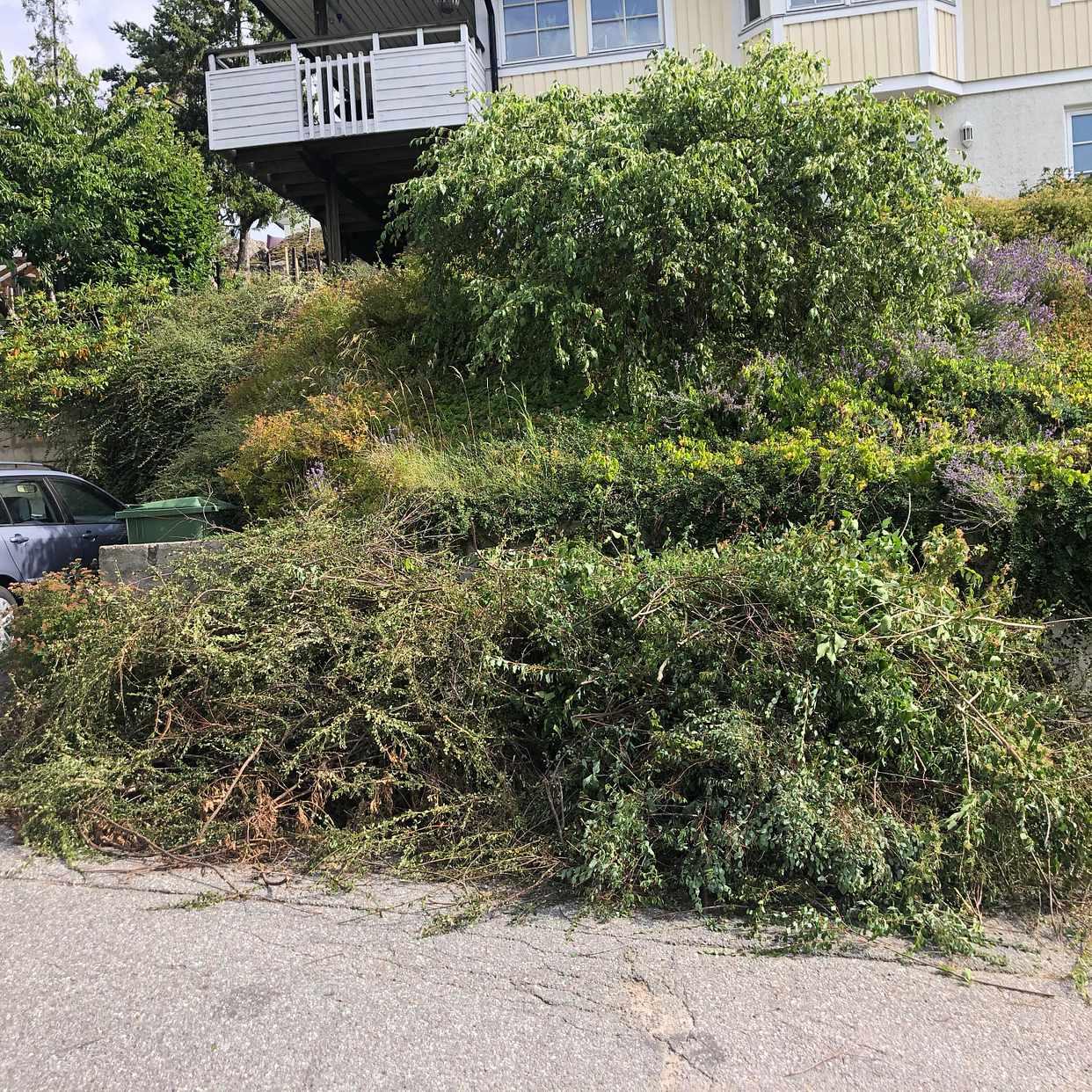 image of Trädgårdsavfall - grenar - Huddinge