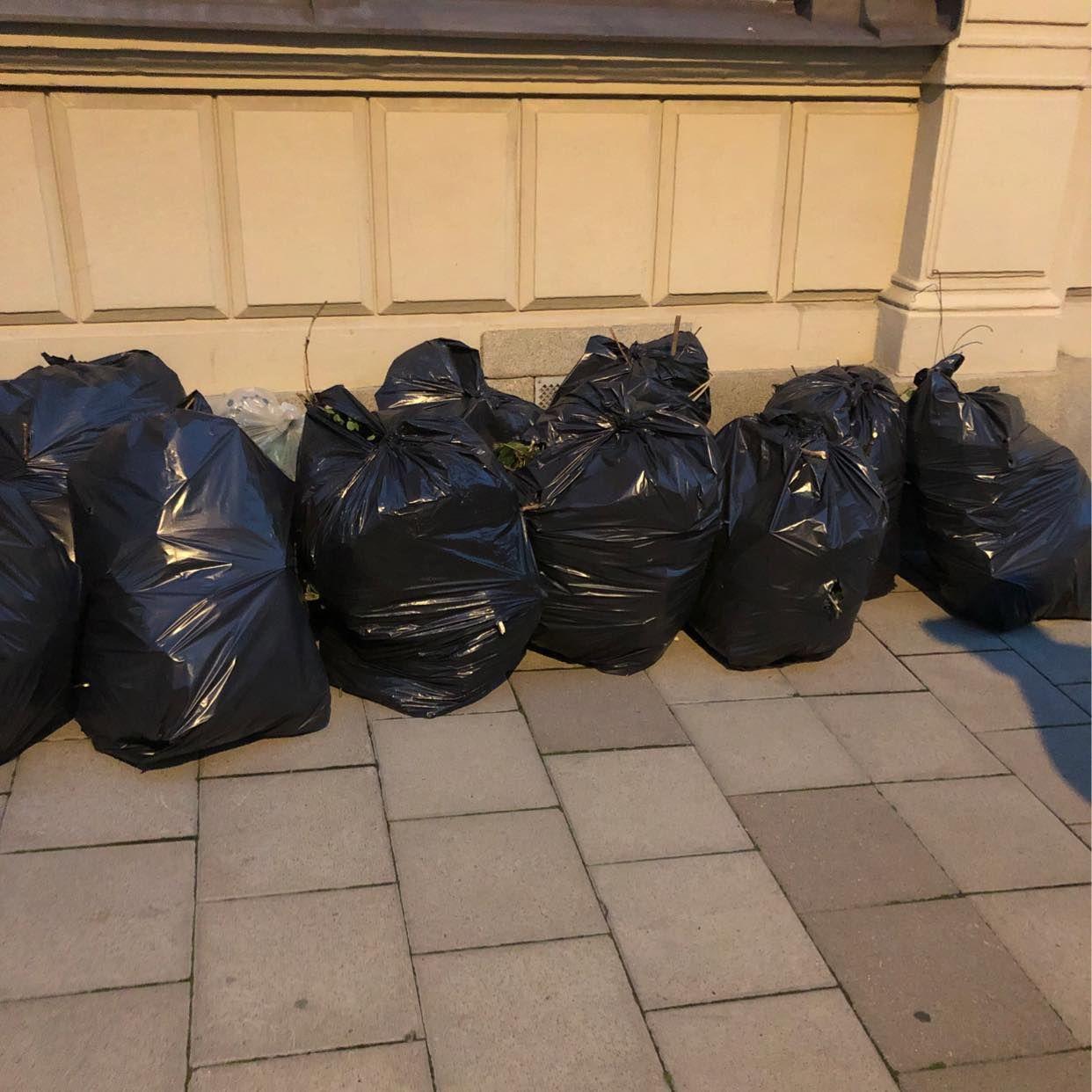 image of 17 säckar löv/grenar - Stockholm