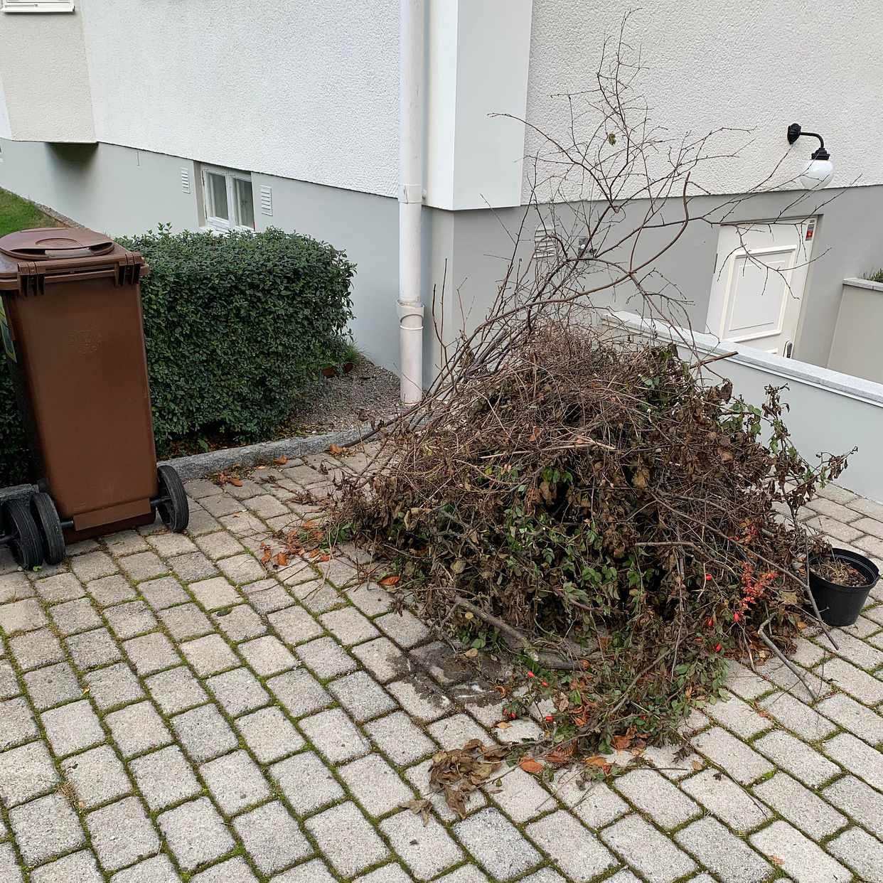 image of Hög med kvistar - Bromma