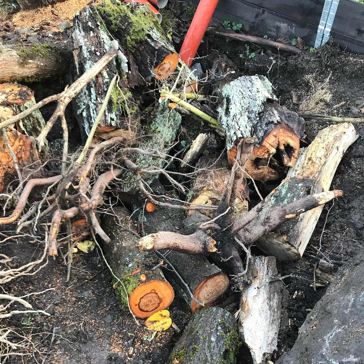 image of Garden waste - Bromma
