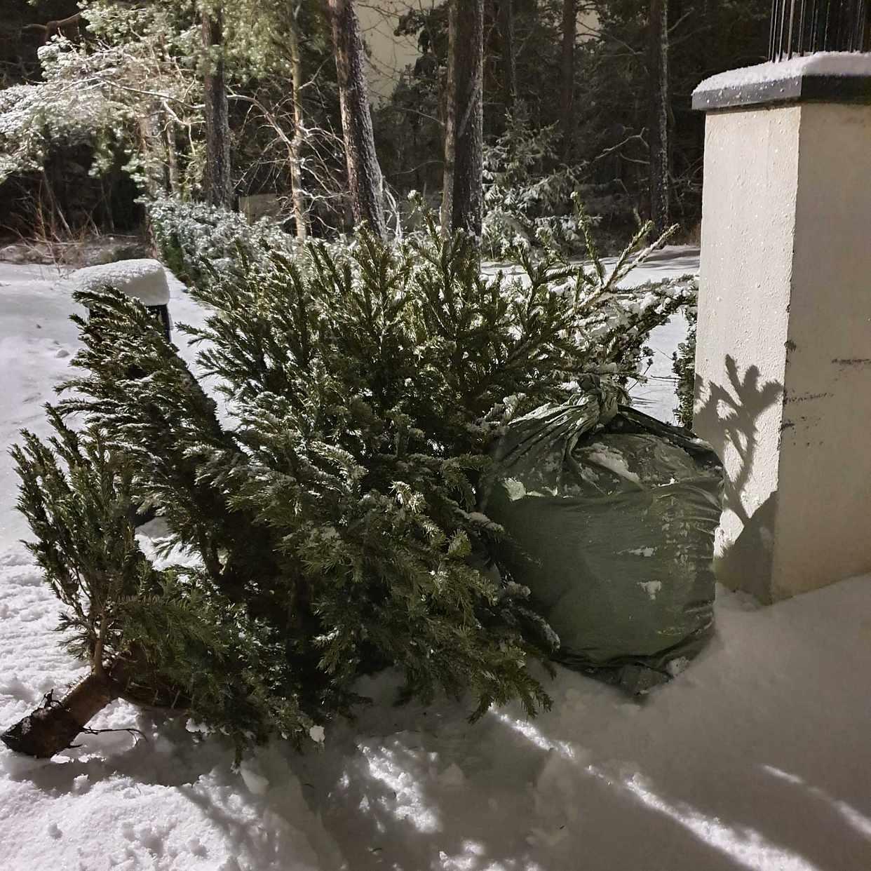 image of Julgran + Trädgårdsavfall - Saltsjö-boo