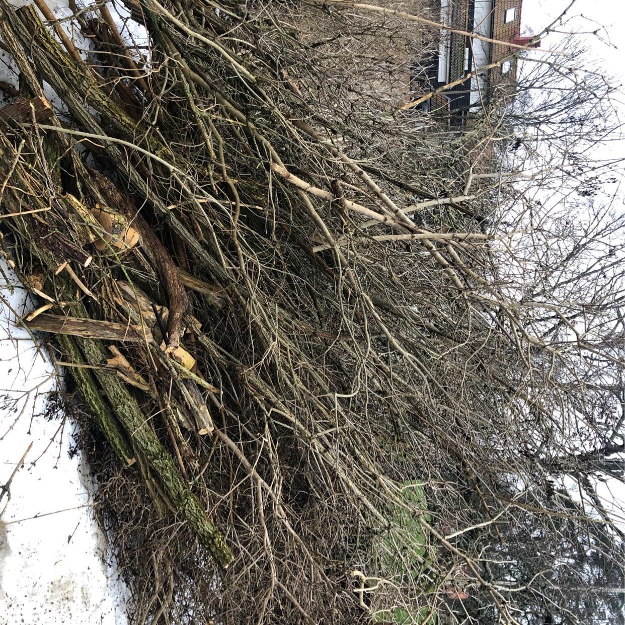 image of Bortforsling av ris - Saltsjö-Duvnäs