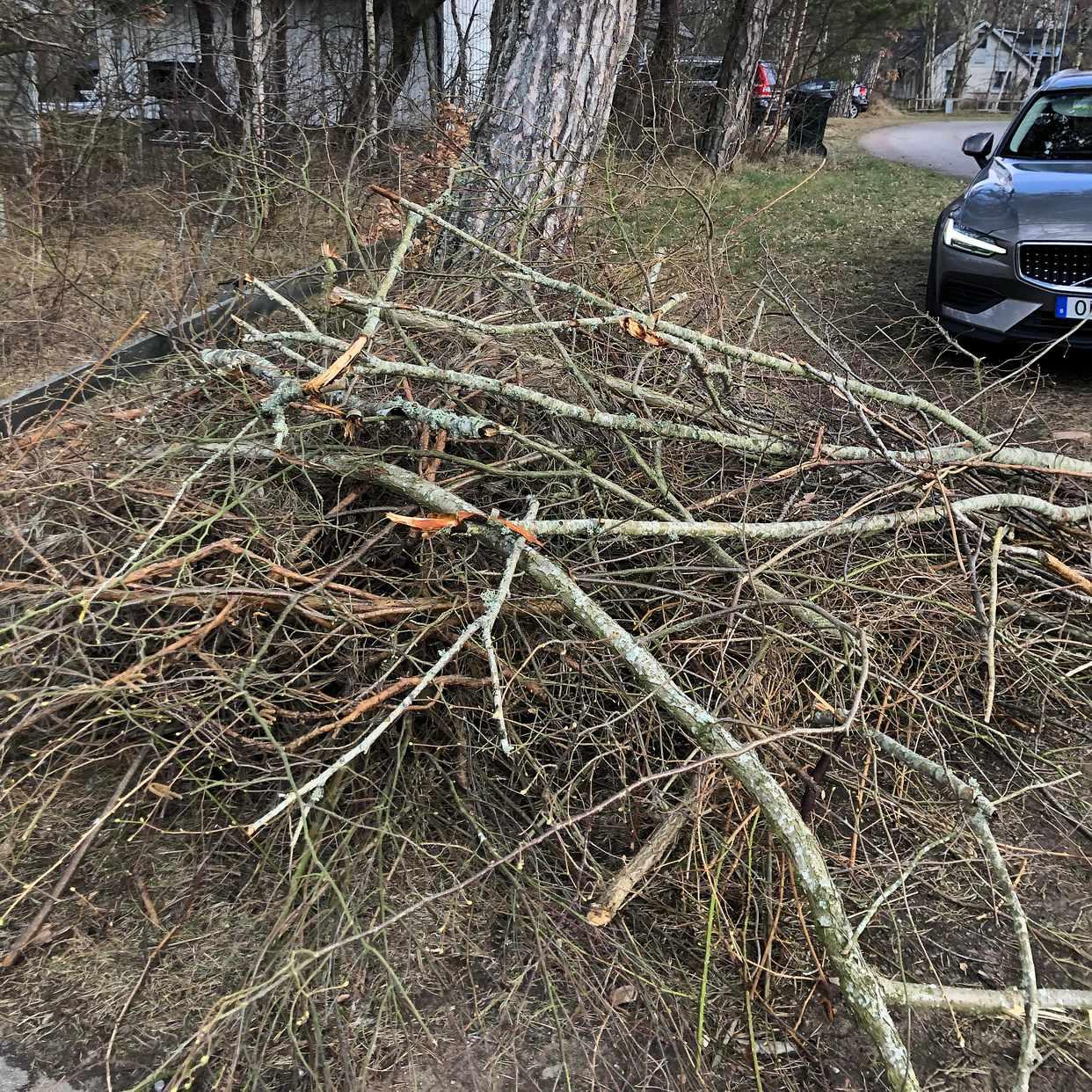 image of Hämt av trädgårdssly - Båstad