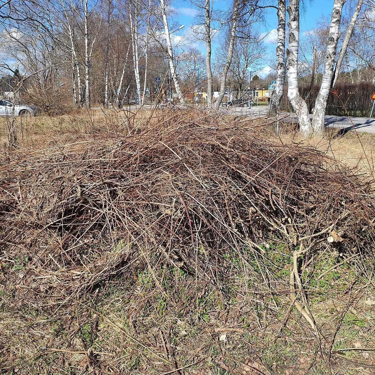 image of Trådgårdsrens - Österskär