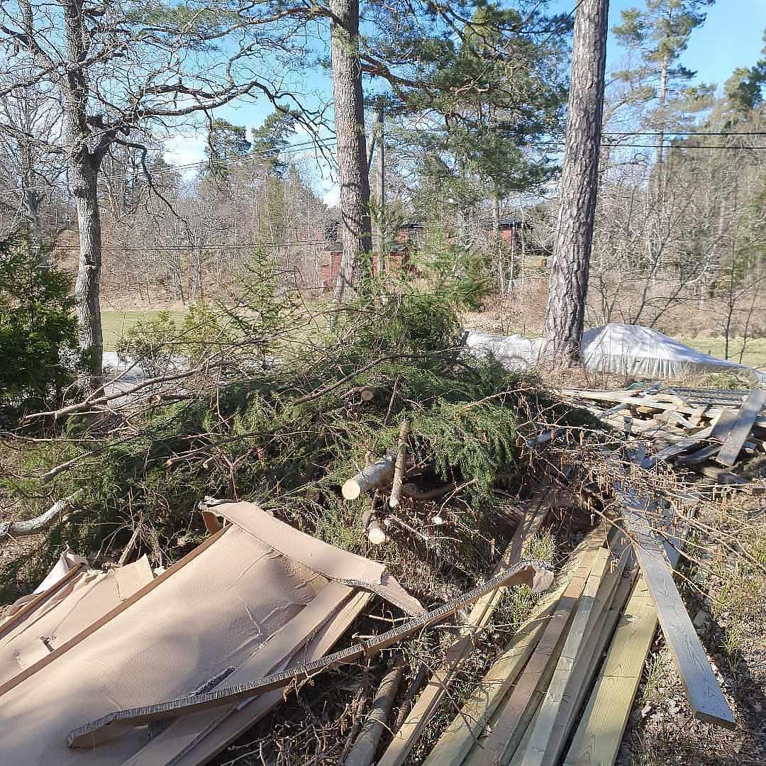 image of Remove branches, twigs, - Värmdö