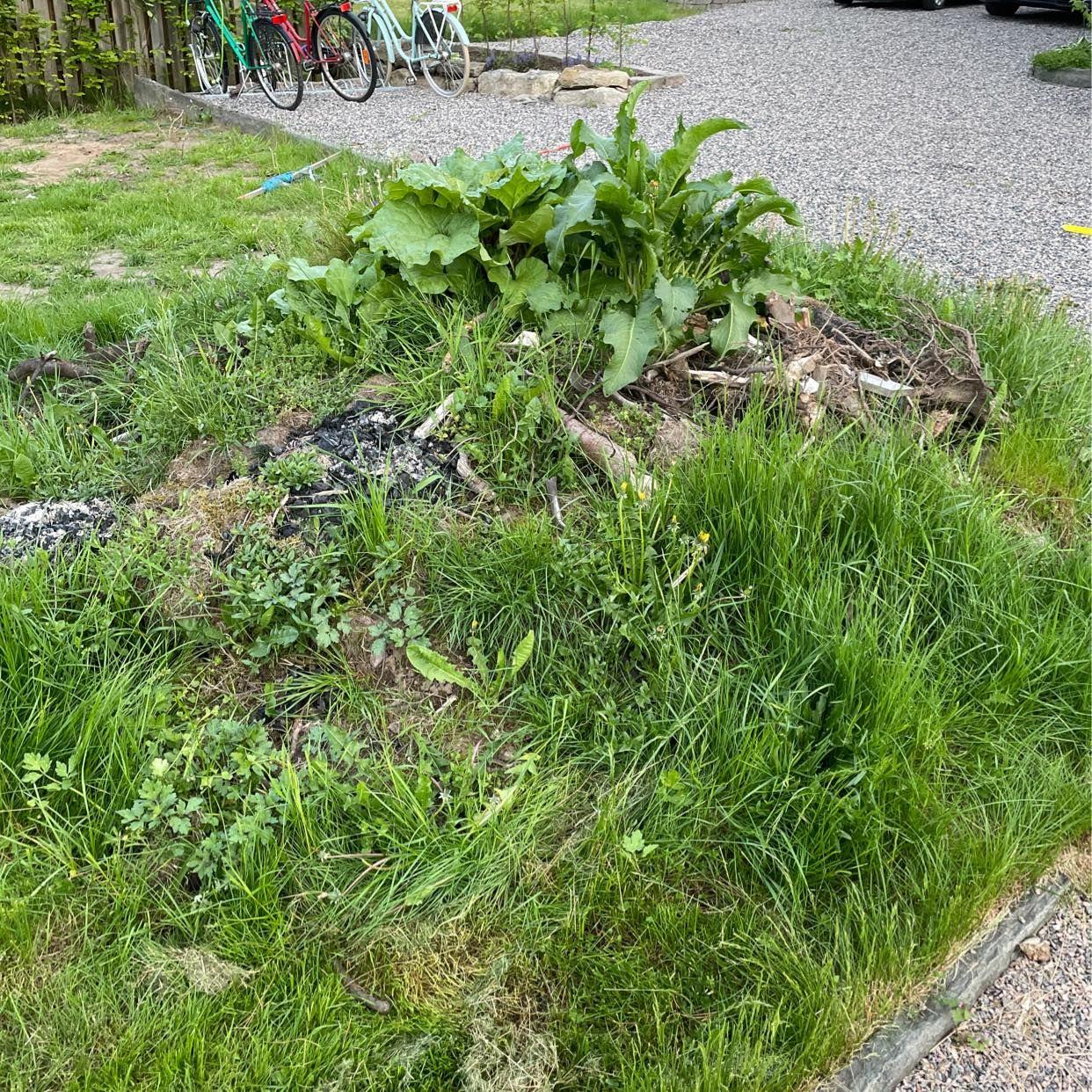 image of Bortforsling - Alingsås